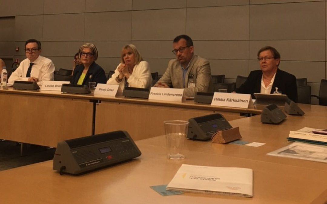 President of GAMIAN-Europe Hilkka Kärkkäinen participates at the OECD mental health expert panel